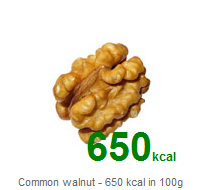WP Calories - screenshot-2